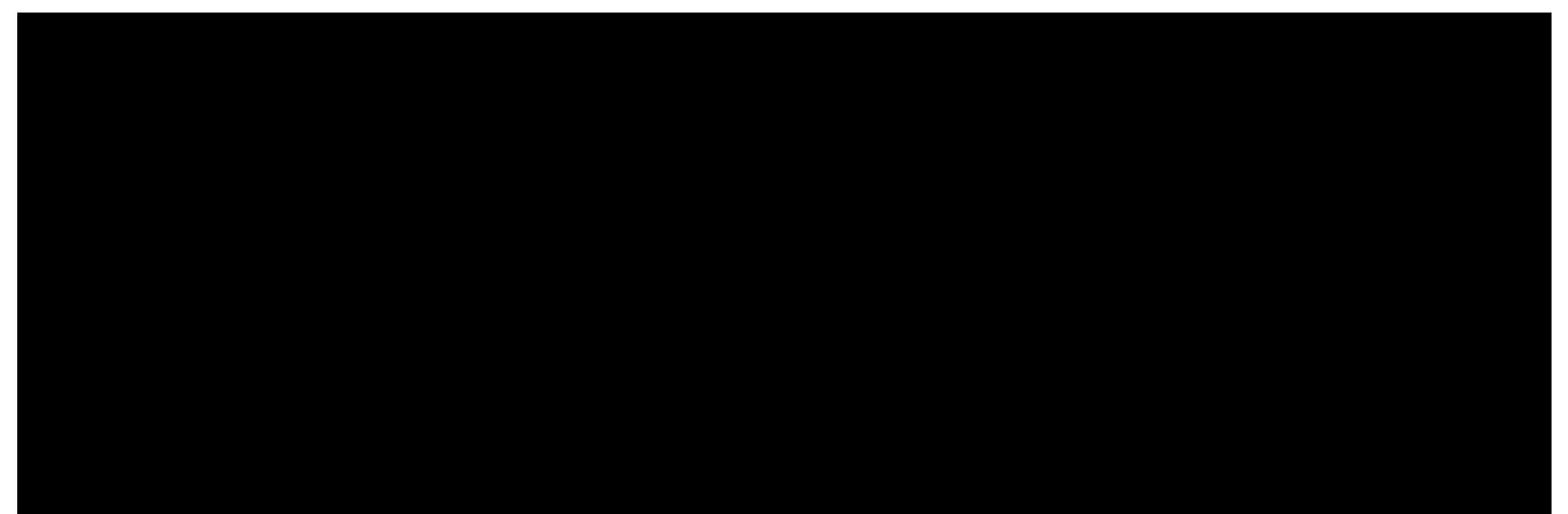 Raveraide